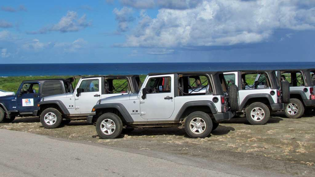 4x4 in Aruba, Shore Excursions Group, Aruba