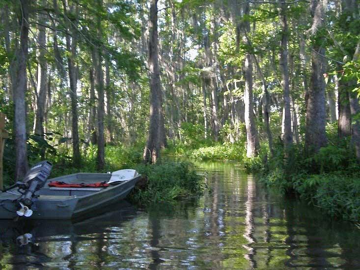 Bayou Touring, New Orleans